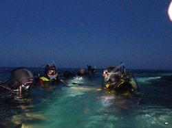 Corso di immersione notturna o con scarsa visibilità