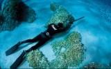 Corso pesca subacquea